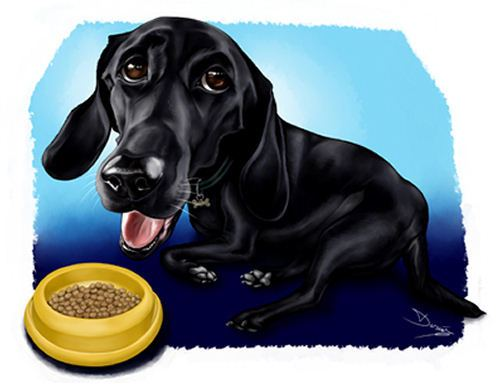 black dog caricature art (54K)