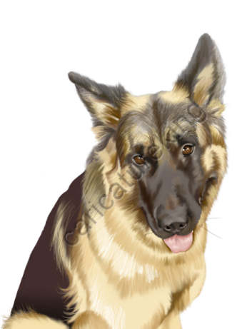 Alsatian dog art