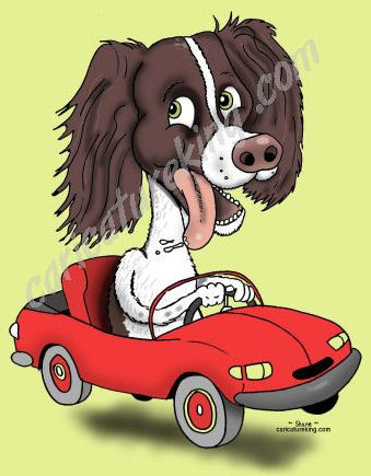 example of dog caricature
